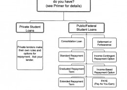 Student Loan Flow Charts